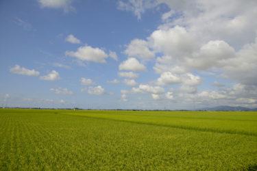 東京から田舎暮らしをしたい方へ!関東や中部地方近郊のおすすめのエリアを紹介