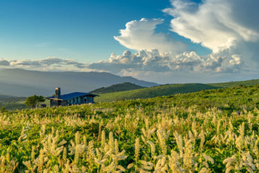 爽やかな高原で諏訪・霧ヶ峰の特徴と魅力をご紹介別荘・移住ライフ!