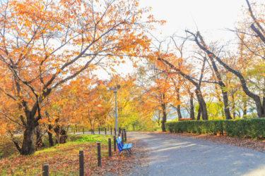 自然と歴史がある上田・上小地域で、別荘・移住・田舎暮らしをはじめよう