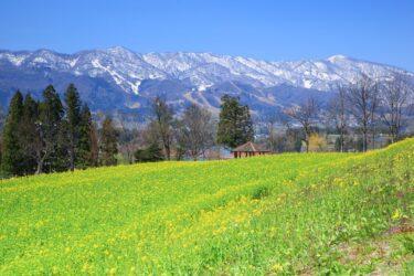 住みやすさランキング上位の町、飯山市・中野市の田舎暮らしの魅力と移住支援制度を紹介